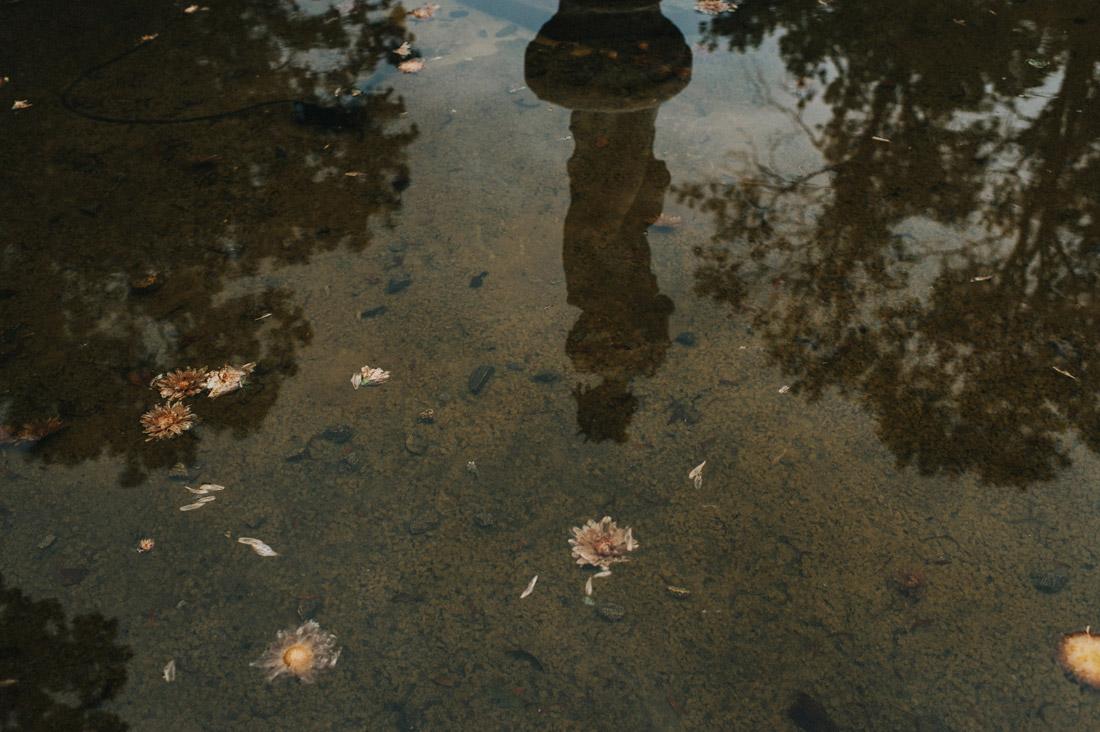 fontanna w Pałacu Pstrokonie